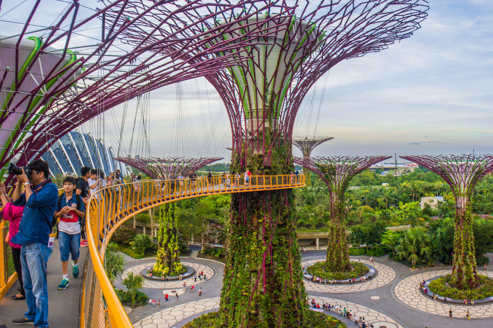 Gardens by the Bay2