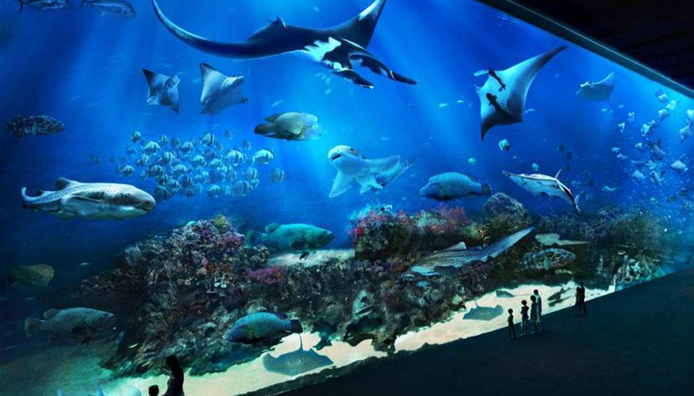 The SEA Aquarium1