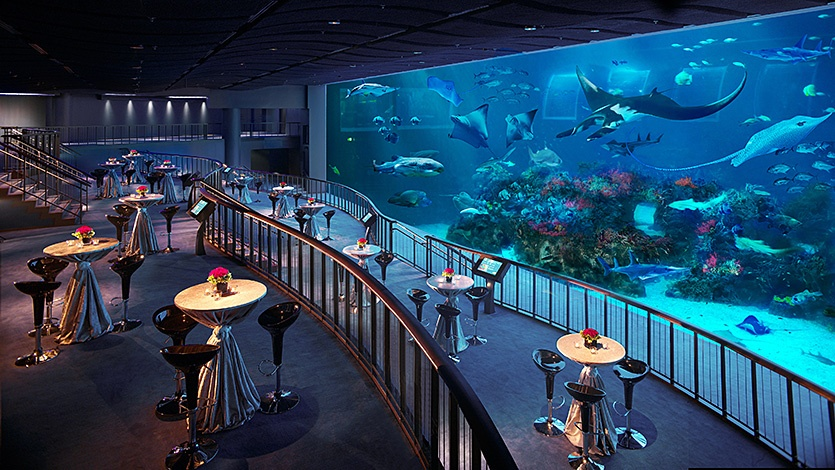 The SEA Aquarium6 singapore itinerary 4 days what to do in singapore in 4 days