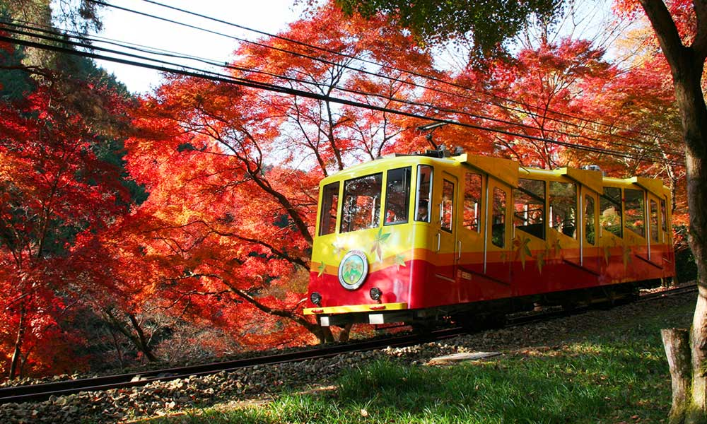 Takao Image by: Kyoto autumn spot blog.