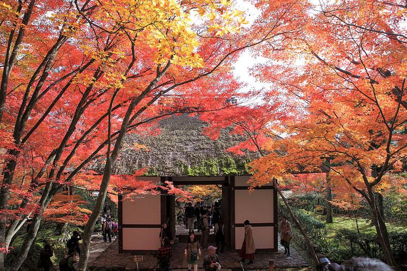 Jokakko-Ji Temple