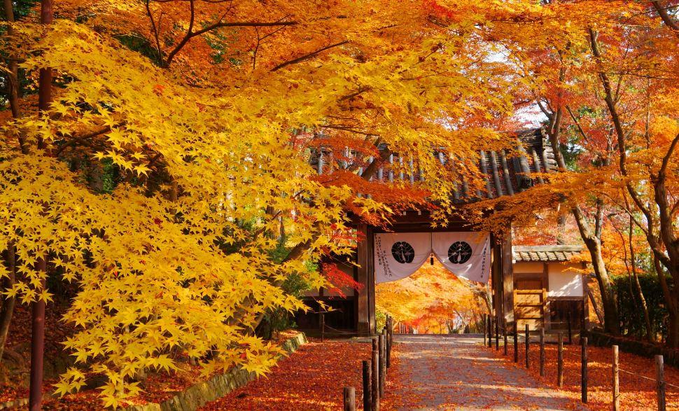 Komyo-Ji Temple2