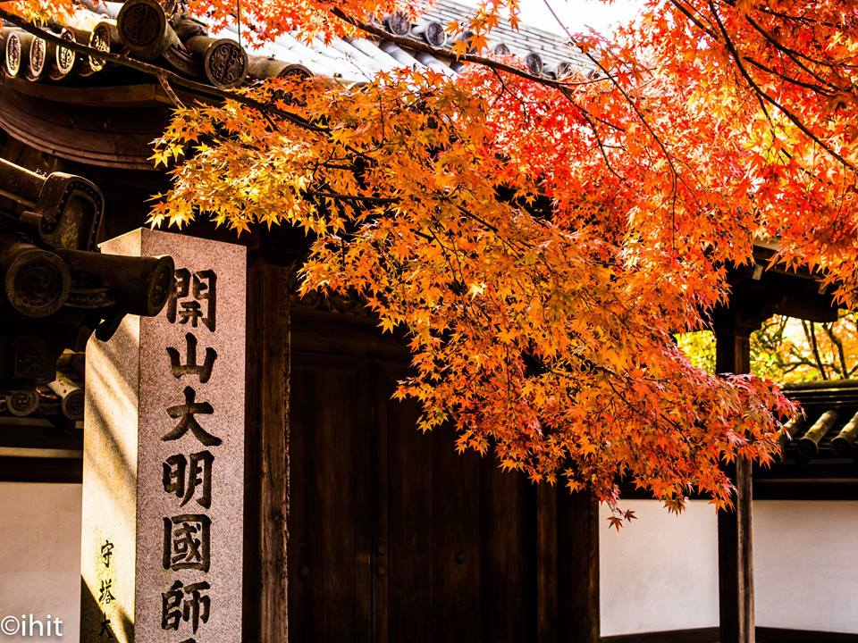 Tenjuan Temple3 kyoto autumn best places to see autumn leaves in kyoto