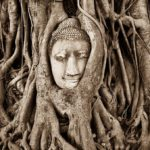 Ayutthaya temples — Top 7 most famous & beautiful temples in Ayutthaya