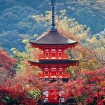 Kyoto autumn leaves forecast 2020 — 15 best autumn spots in Kyoto & best place to see autumn leaves in Kyoto