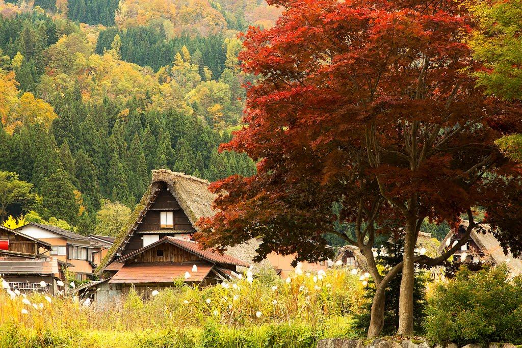 Shirakawa-go1 things to do in shirakawa go shirakawa go things to do shirakawago