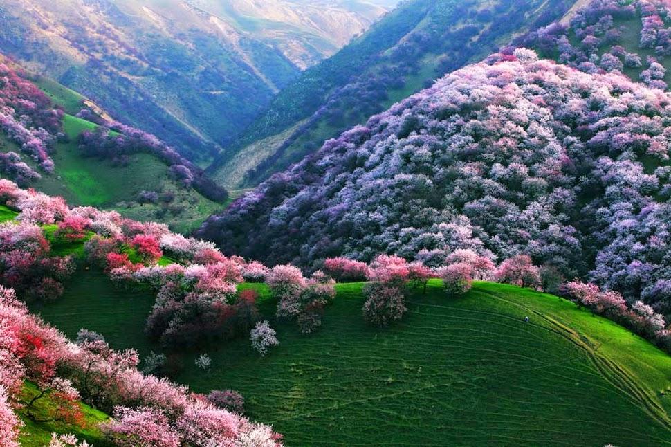 Tashkurgan_Xinjiang travel blog china (1)