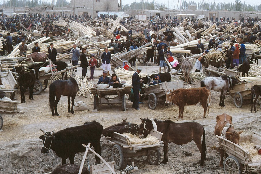 Xinjiang animals market