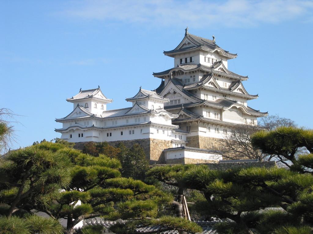 Japanese ancient castle 2