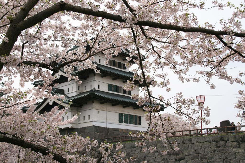 Japanese ancient castle 26