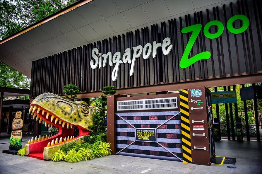 Singapore zoo5 singapore zoo guide singapore zoo travel tips singapore zoo tips