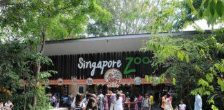 Singapore_Zoo_entrance