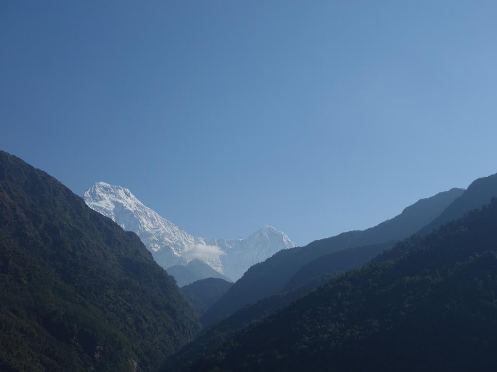 Annapurna South Mountain