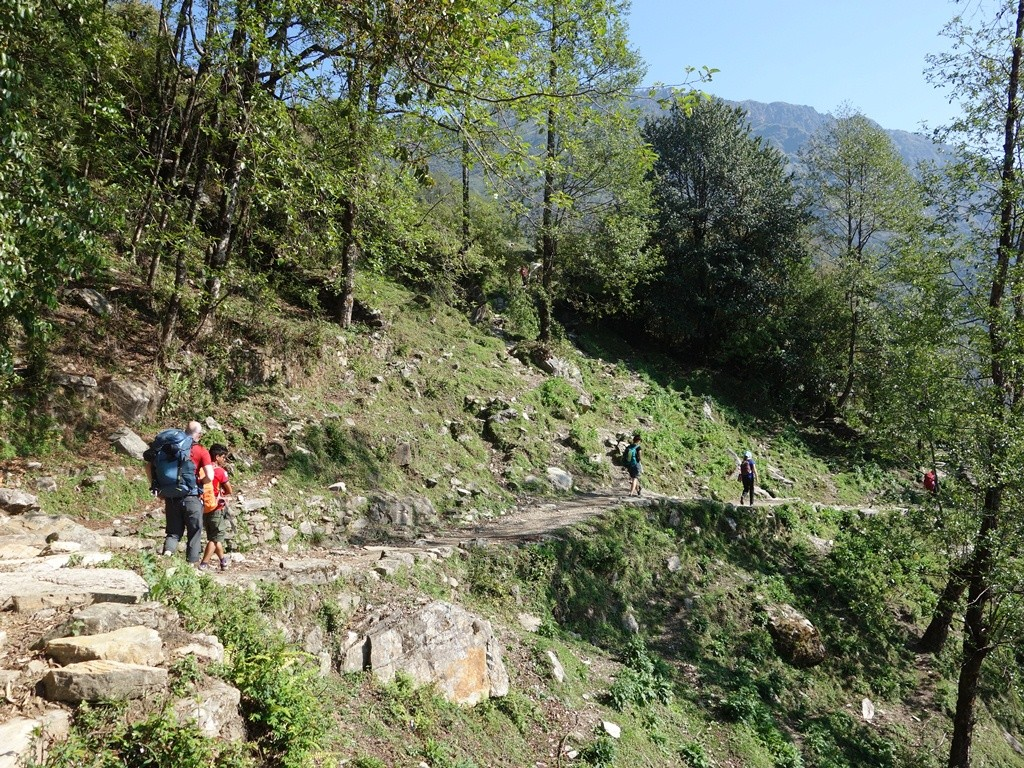 trekking-Poon-Hill-Nepal16