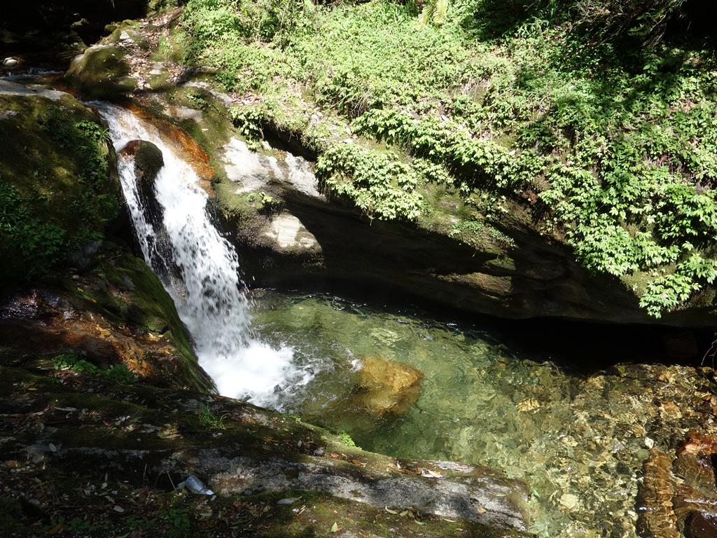 trekking-Poon-Hill-Nepal17