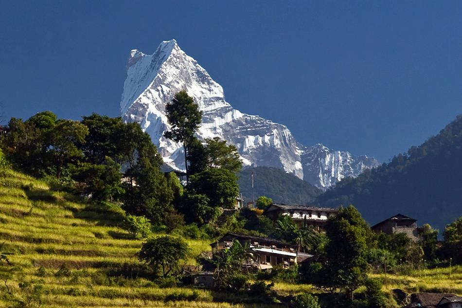 Picture: trekking Poon Hill blog.