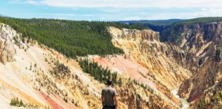 Visit Yellowstone - the first national forest in the world10