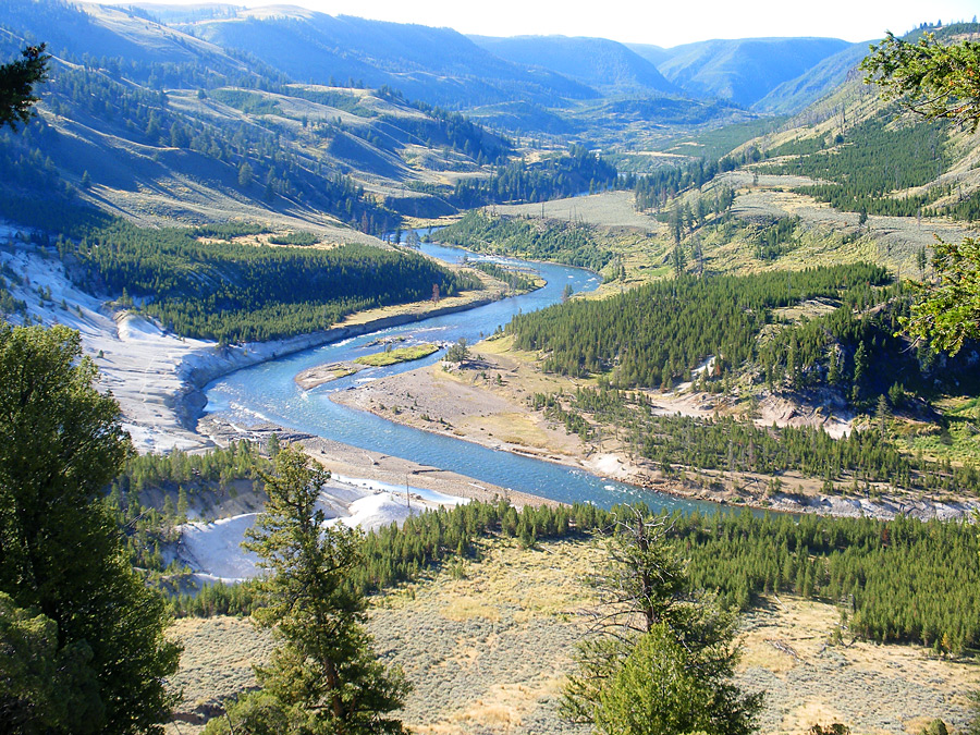 Visit Yellowstone - the first national forest in the world3