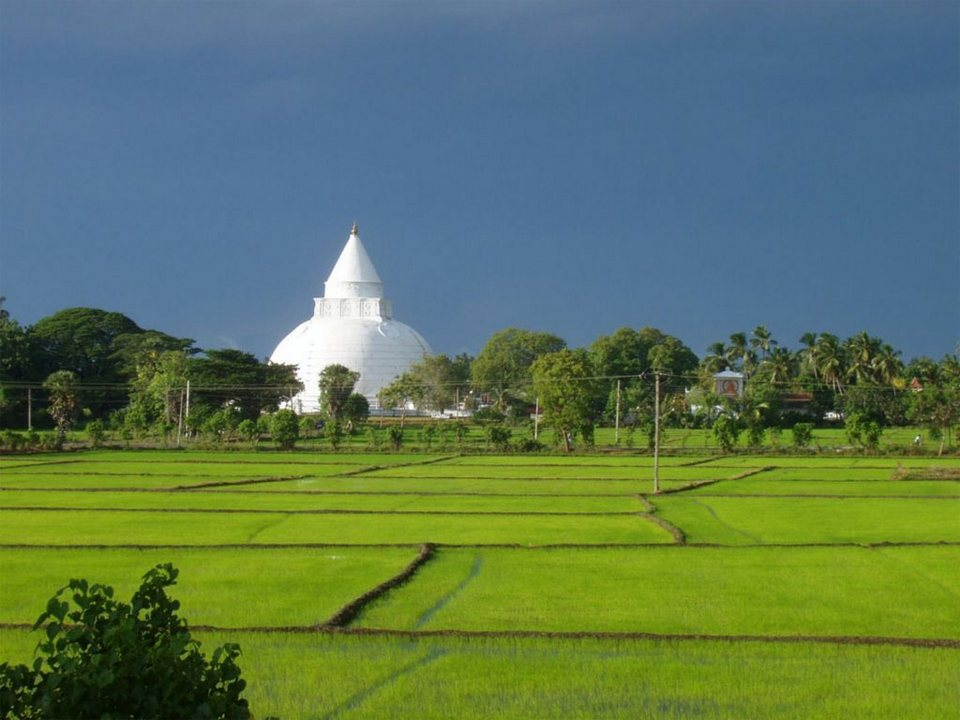 Sri Lanka Travel Experience Top 7 Best Places To Visit