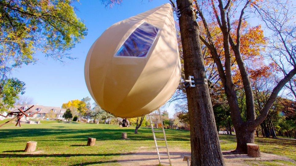 Laumeier Sculpture Park featuring a park, fall colors and landscape views