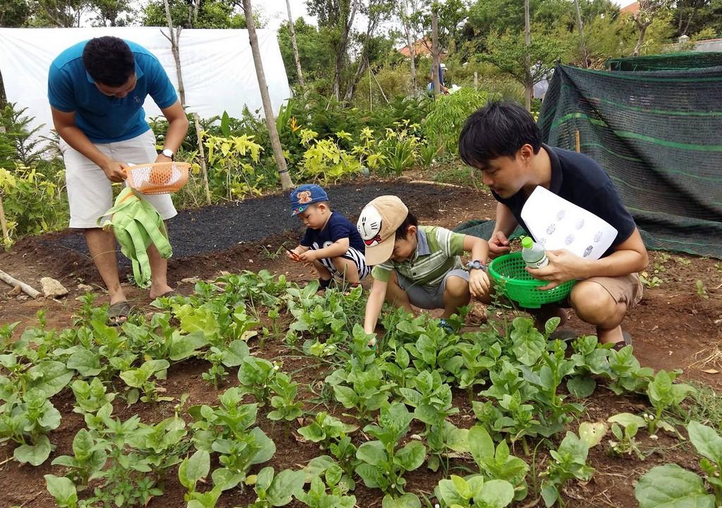 Thao Dien Family Garden 2