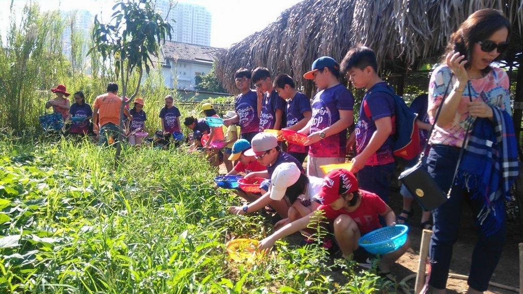 Thao Dien Family Garden 4