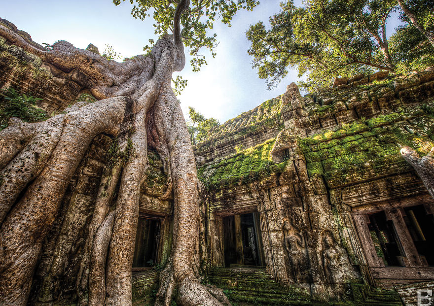 ta-prohm-temple1 Photo: siem reap travel blog 2017.