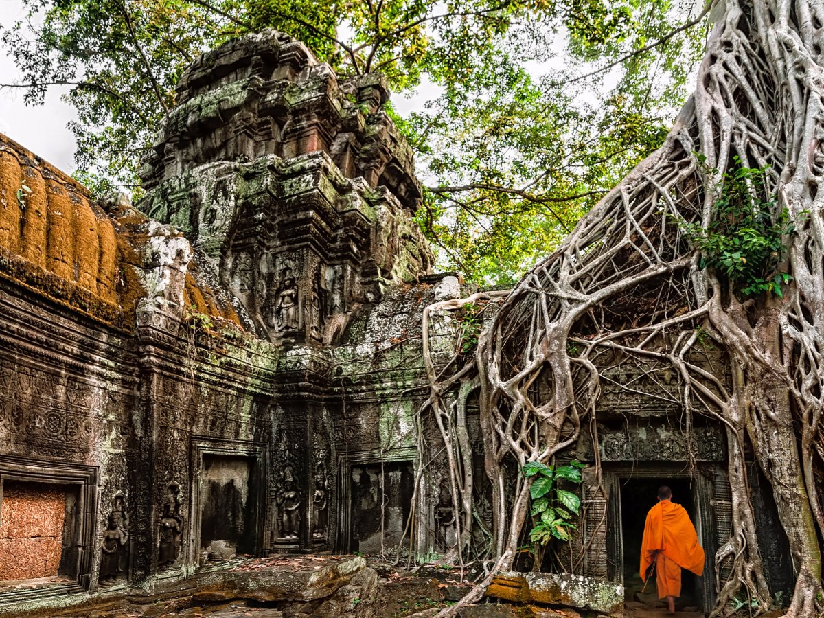 ta-prohm-temple2 siem reap itinerary 4 days 4 days in siem reap what to do in siem reap in 4 days