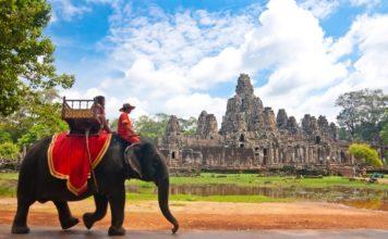 Siem-Reap elephant ride 2