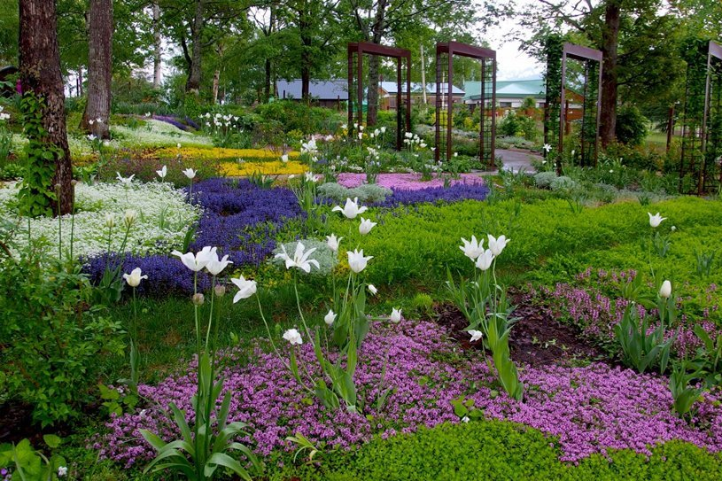 Ueno flower farm-hokkaido2 Image: places to visit in hokkaido blog.