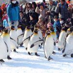 Hokkaido travel blog — The fullest guide for a budget trip to Hokkaido, Japan