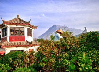Ngong Ping Tea-house