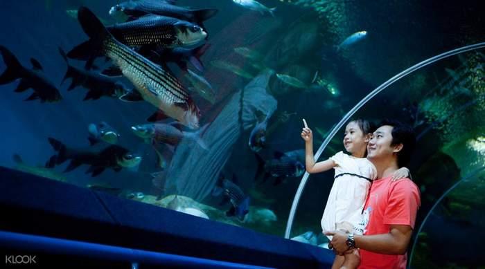 UnderwaterWorldPattaya