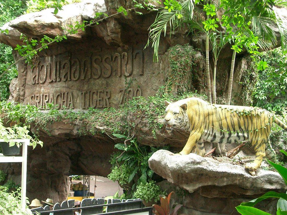 Siracha Circus Pattaya