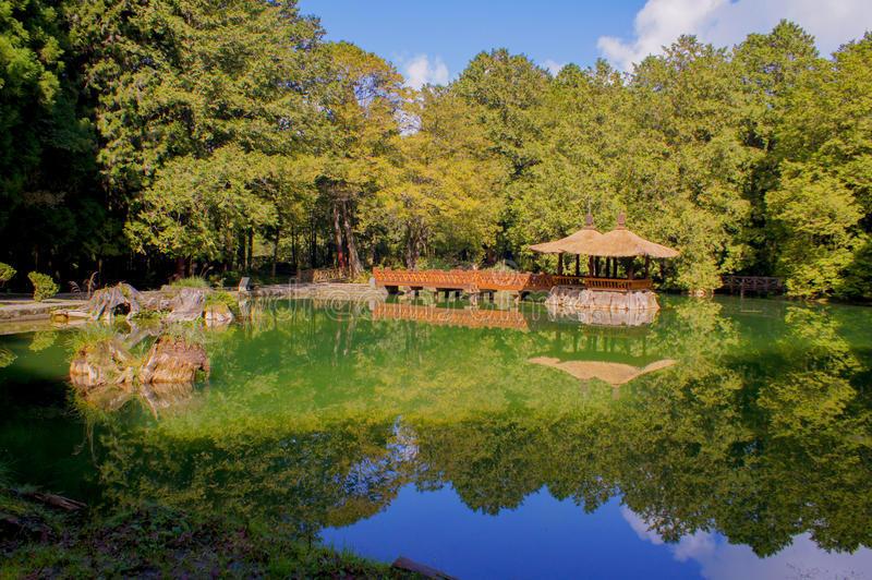sister-pond-alishan-plateau-taiwan11