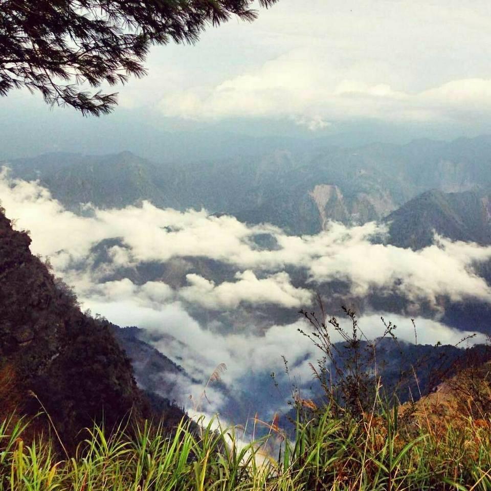 alishan-mountain-taiwan1