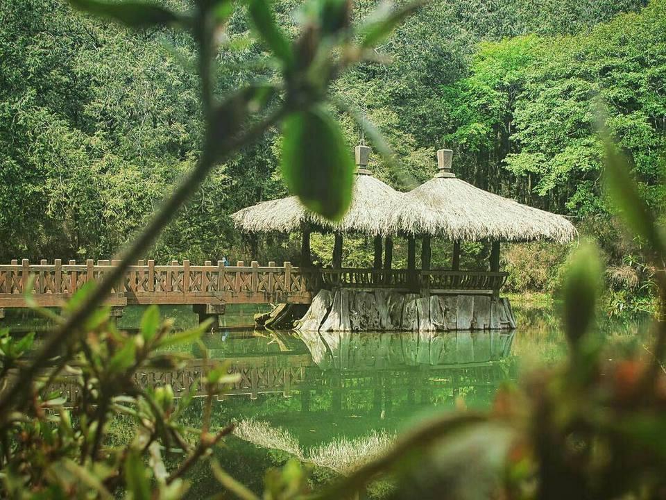 sisters-pond-alishan-taiwan1