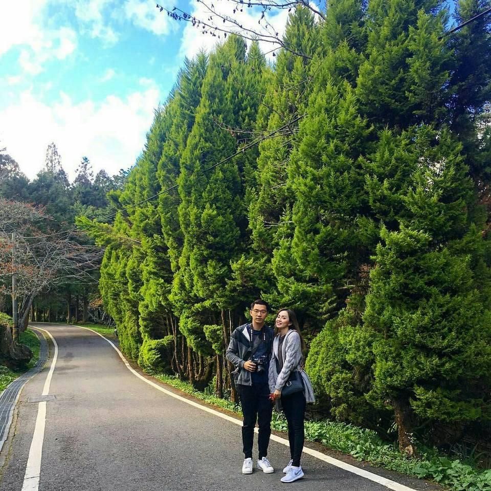 alishan-natinal-scenic-park-taiwan1