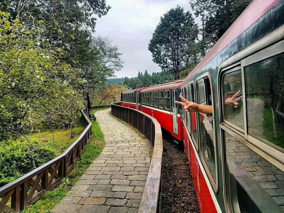 forest-railway-alishan-taiwan1