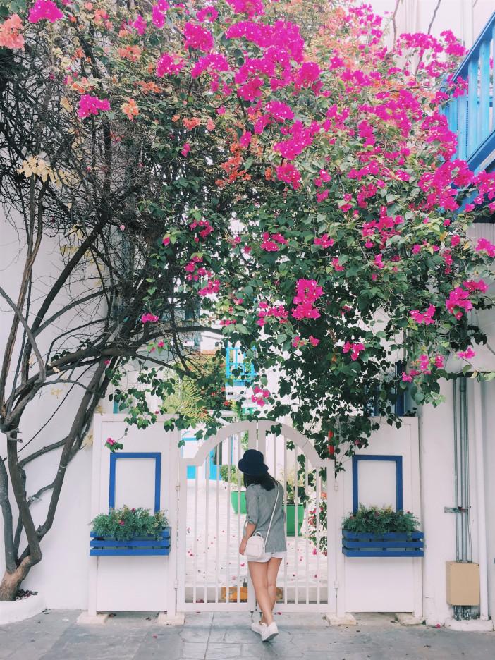 Santorini-Park.jpg
