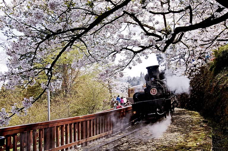 alishan-railroad-alishan-taiwan 2