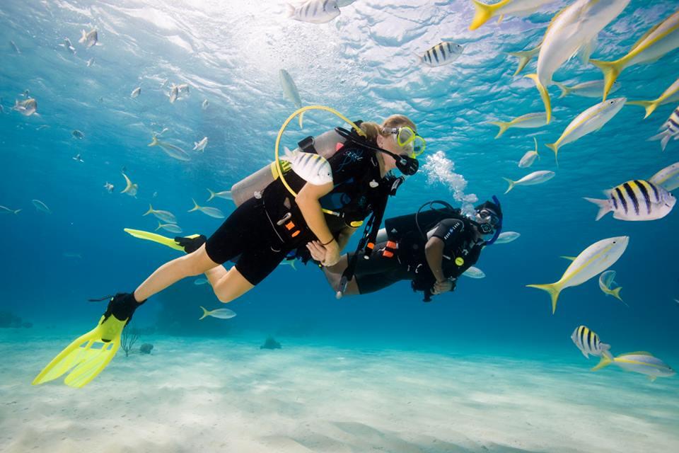 Scuba Diving Bali's