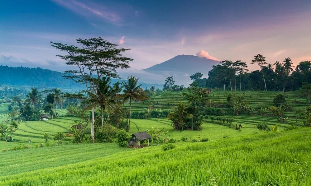 The best time to go to Bali is in May to October