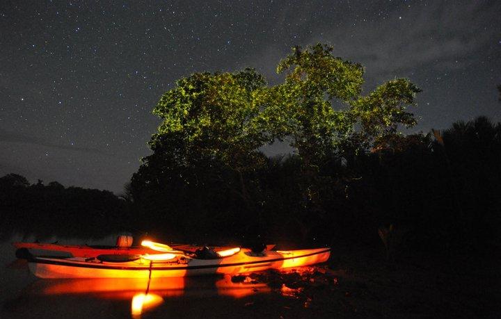 fireflies locboc river