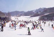 skiing-in-winter-korea