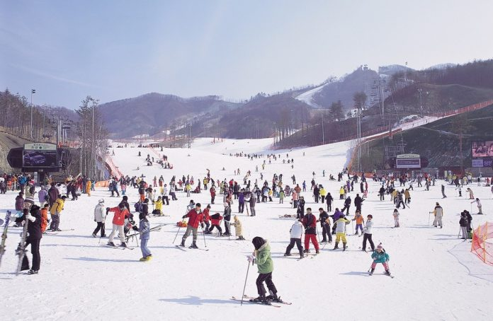 skiing-in-winter-korea
