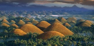 bohol chocolate-hills-PHIL0116