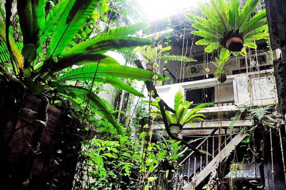 Baboon House, Malacca Credit: melaka travel guide.