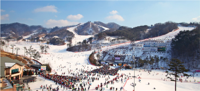 hansol-oak-gangwon-korea-tours
