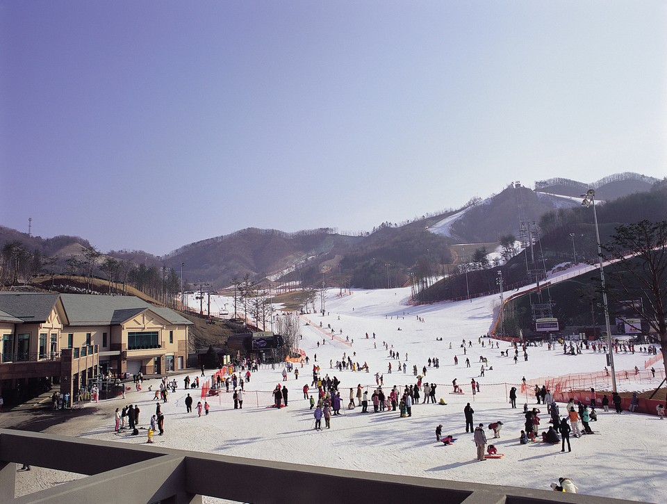hansol-oak-gangwon-korea-tours3 skiing in korea skiing in south korea best ski resorts in korea best ski resort near seoul